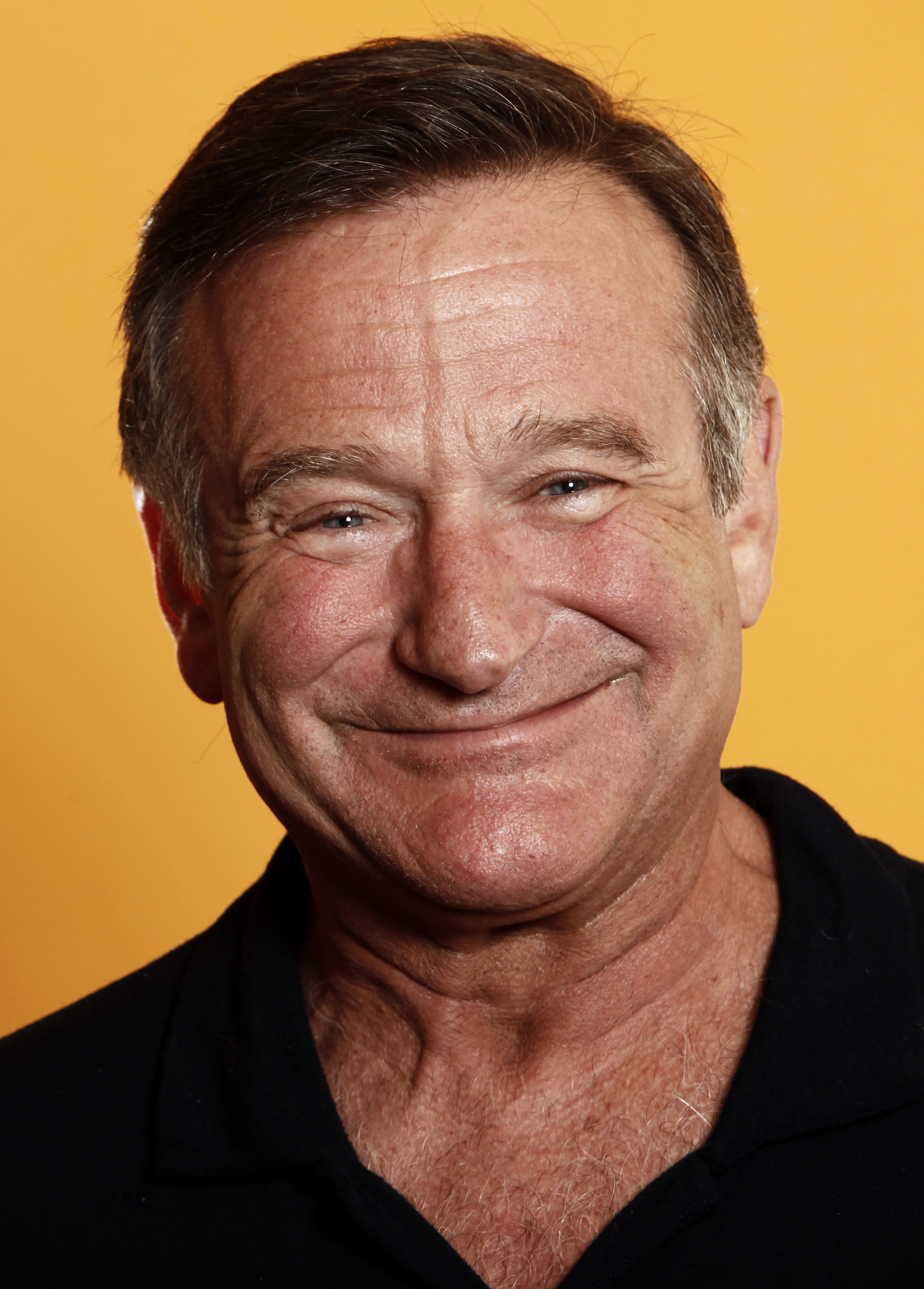 Robin Williams say actor Robin Williams
