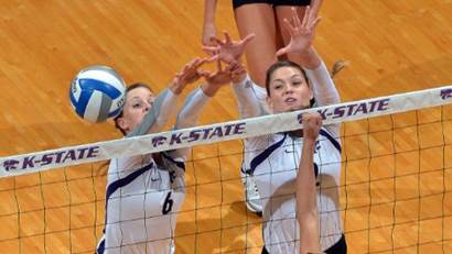 Volleycats Pic